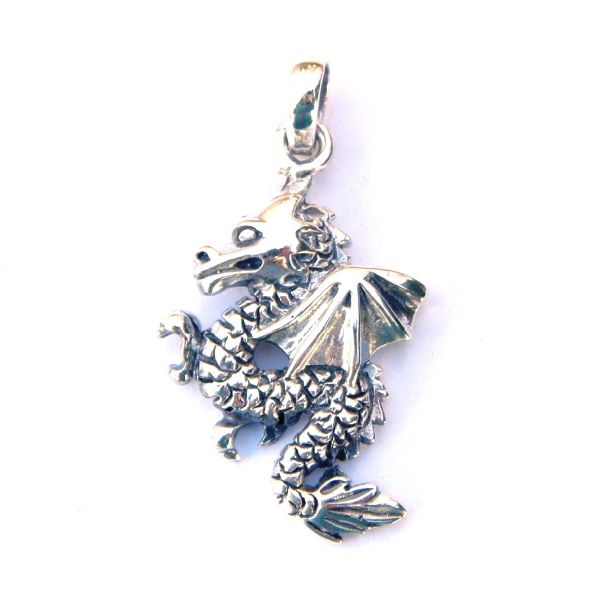 Beautiful Dragon Pendant.