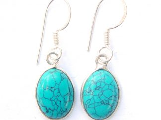 Turquoise Large Oval Earrings