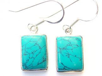 Turquoise Rectangular Earrings.