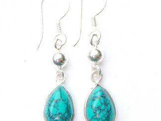 Turquoise Dangling Earrings.